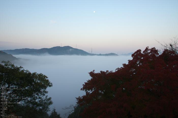 P_K33490_SIL(17mm,F10),笠置寺,紅葉,2013yaotomi_.jpg