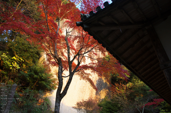 P_K33510_SIL(17mm,F5,6),笠置寺,紅葉,2013yaotomi_.jpg