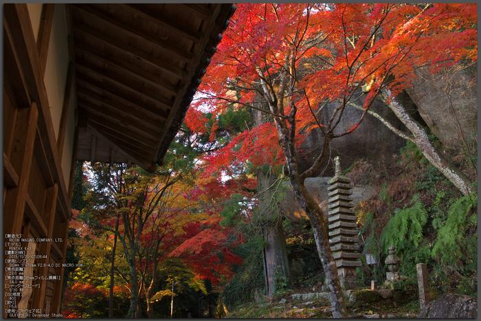P_K33525_笠置寺,紅葉,2013yaotomi_1st.jpg