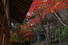 P_K33525_SIL(23mm,F5,6,FULL),笠置寺,紅葉,2013yaotomi_.jpg