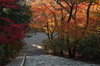 P_K33880_SIL(31mm,F7,1,FULL)室生寺紅葉,2013yaotomi.jpg