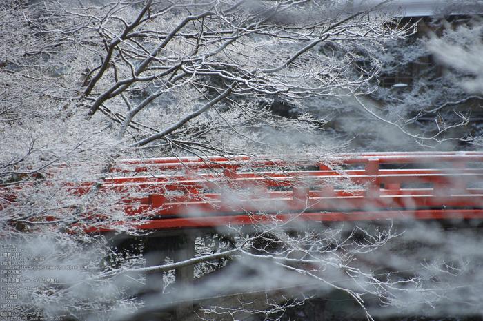 三尾,西明寺_PENTAX,K3(135mm,F3,2)PK3_5624_2014yaotomi_.jpg