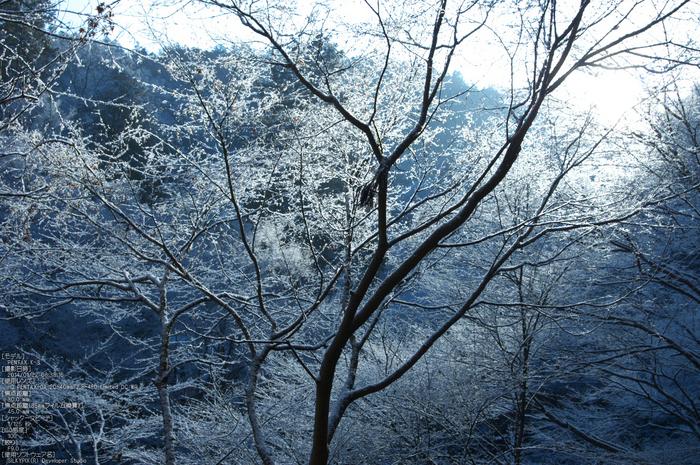 三尾,西明寺_PENTAX,K3(30mm,F9,0)PK3_5669_2014yaotomi_.jpg