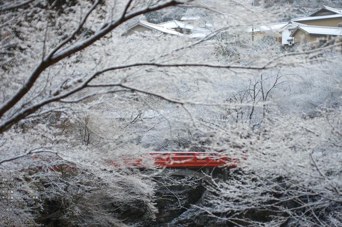 三尾,西明寺_PENTAX,K3(50mm,F2,8)PK3_5628_2014yaotomi_.jpg