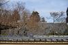 大和七福八宝めぐり(當麻寺,2014)_DSC_6371(Cap,F2.5,iso100,AFsNIKKOR58_1,4G,D800E,FULL)2014yaotomi.jpg