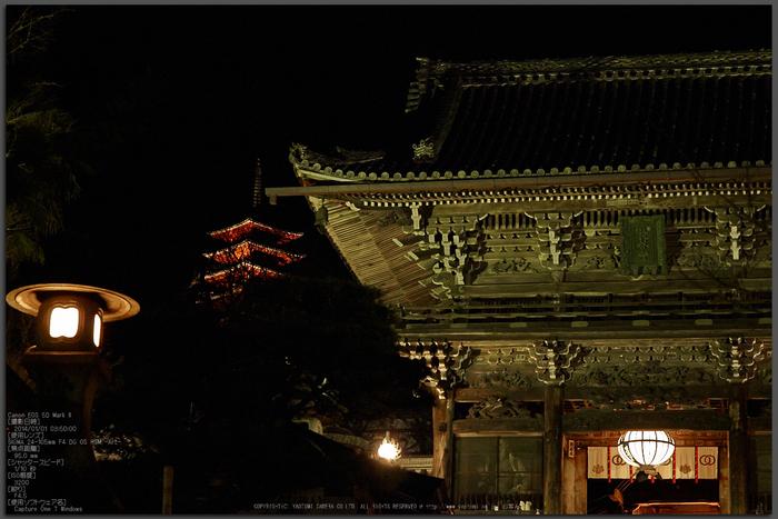 奈良長谷寺,観音万燈会_Cap(95mm,F4.5,iso3200,5DmarkII,SIGMA24_105)2014yaotomi_top.jpg