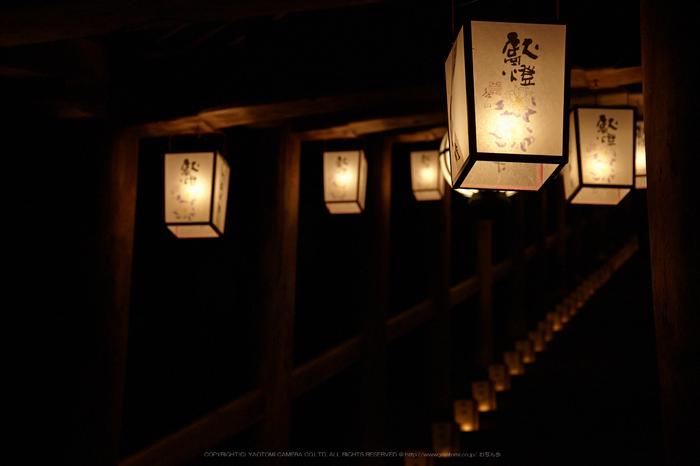 長谷寺,観音万燈会_IMG_4875Cap(68mm,F4.5,iso1600,SIGMA24_105,5DmarkII)2013yaotomi.jpg