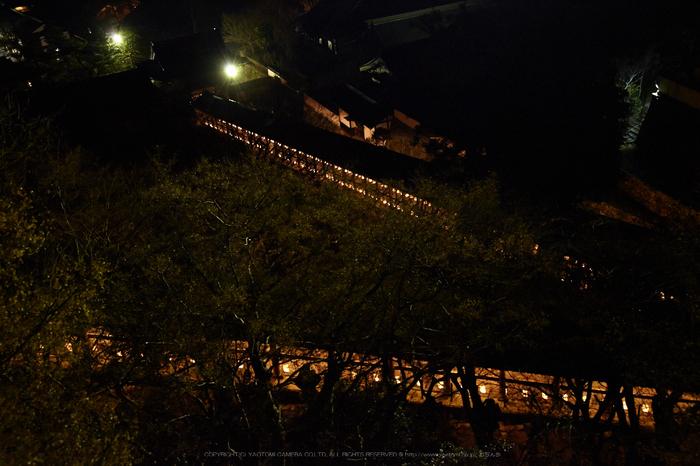 長谷寺,観音万燈会_IMG_4914Cap(42mm,F4.5,iso3200,SIGMA24_105,5DmarkII)2013yaotomi.jpg