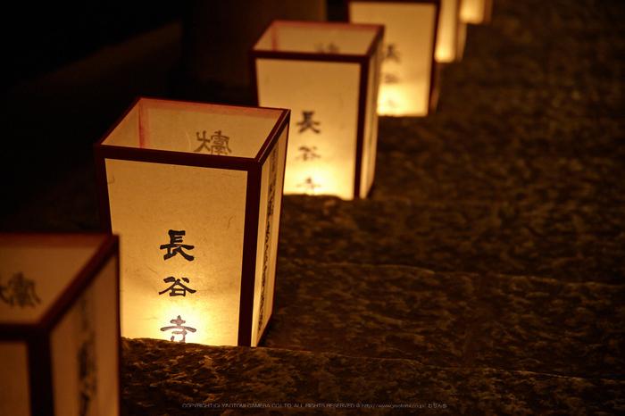 長谷寺,観音万燈会_IMG_4961Cap(105mm,F4,iso1600,SIGMA24_105,5DmarkII)2013yaotomi.jpg