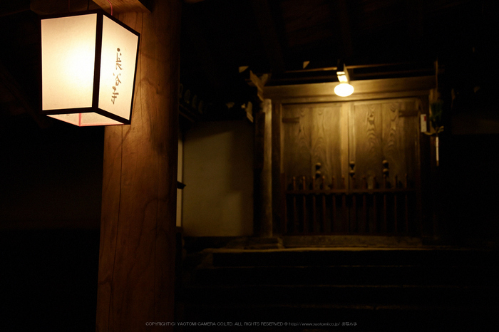長谷寺,観音万燈会_IMG_4987Cap(46mm,F4.5,iso1600,SIGMA24_105,5DmarkII)2013yaotomi.jpg