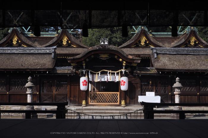北野天満宮,梅(OMD_EM10,09-55-26,31mm,F8,iso200)2014yaotomi_.jpg
