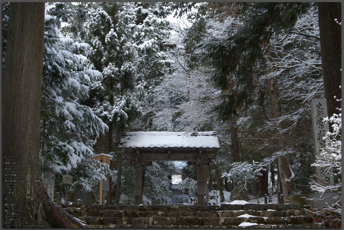 常照皇寺,雪景(K3,101358_38mm,F7,1)2014yaotomi_Top.jpg