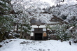 常照皇寺,雪景(K3,104843,20mm,F8,0,FULL)2014yaotomi_.jpg