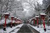 鞍馬寺,雪景(NOCTICRON,08-17-59,12mm,F6.3)_2014yaotomi_.jpg