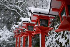 鞍馬寺,雪景(NOCTICRON,08-43-00,43mm,F1.2)_2014yaotomi_.jpg