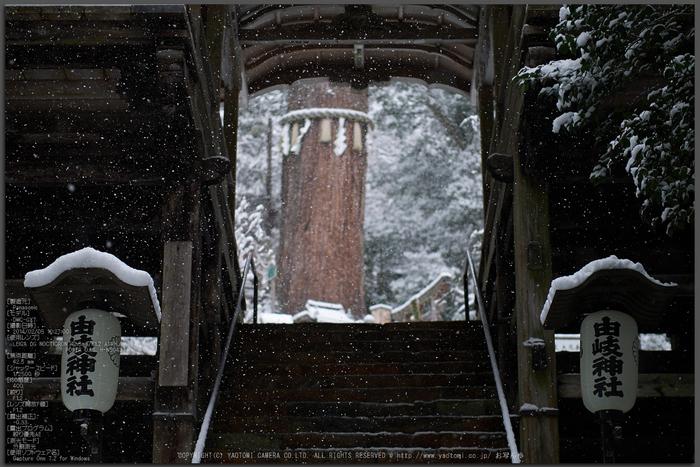 鞍馬寺,雪景(NOCTICRON,10-27-00Cap,43mm,F1.2)_2014yaotomi_Top.jpg