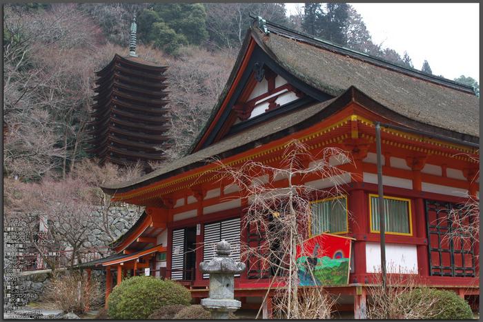 大和七福八宝めぐり,談山神社_PK3_6368,F5,6(SIGMA30mm)_2014yaotomi_TOP.jpg