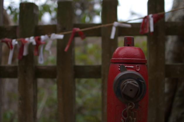 大和七福八宝めぐり,談山神社_PK3_6421,F1,4(SIGMA30mm)_2014yaotomi_.jpg