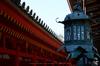 奈良,梅,SIGMA18_200,(IMG_9950,54mm,F6.3,FULL)2014yaotomi_.jpg
