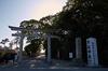結城神社,梅,SIGMA18_200,(IMG_0517,18mm,F9)2014yaotomi_.jpg