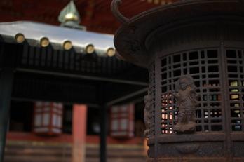 観心寺,梅(PK3_7316_F1,4_30mm)2014yaotomi_.jpg