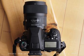 SIGMA,35mmF14DG,_PENTAX,K3yaotomi (1) .jpg