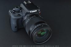 SIGMA18_200mm,kissX7_2014yaotomi_ (3) .jpg