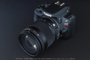 SIGMA18_200mm,kissX7_2014yaotomi_ (4) .jpg