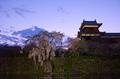 郡山城跡・桜(PK3_8874,F4.5,26mm)2014yaotomi_.jpg