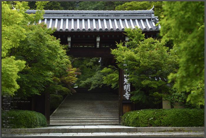 光明寺・新緑(SDIM0554,F2)2014yaotomi_Top.jpg
