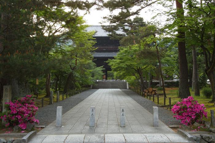 南禅寺,新緑(SDIM0010,SIGMA,SD1merrill)2014yaotomi_.jpg