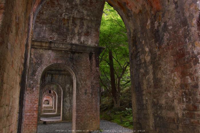 南禅寺,新緑(SDIM0111,18mm,F4.5)2014yaotomi_.jpg