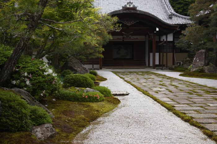 南禅寺,新緑(SDIM0140,29mm,F2)2014yaotomi_.jpg