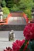 室生寺,石楠花(DSCF5907,F13,55mm)2014yaotomi_.jpg