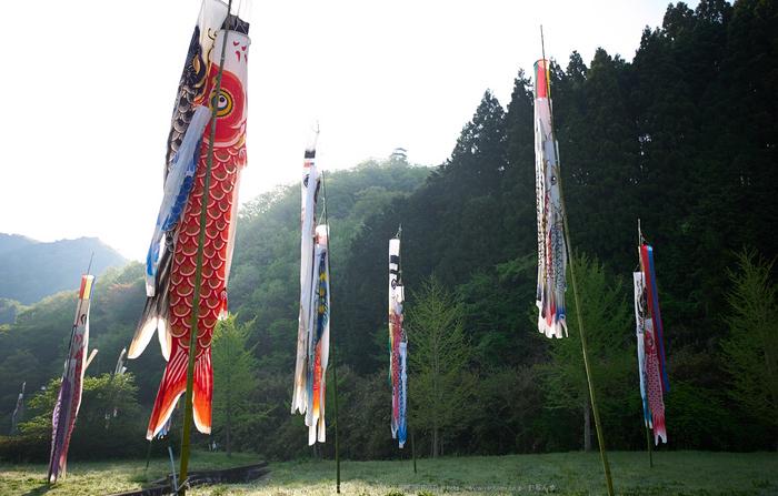 室生湖,新緑(P1040268,F1.7)2014yaotomi_.jpg