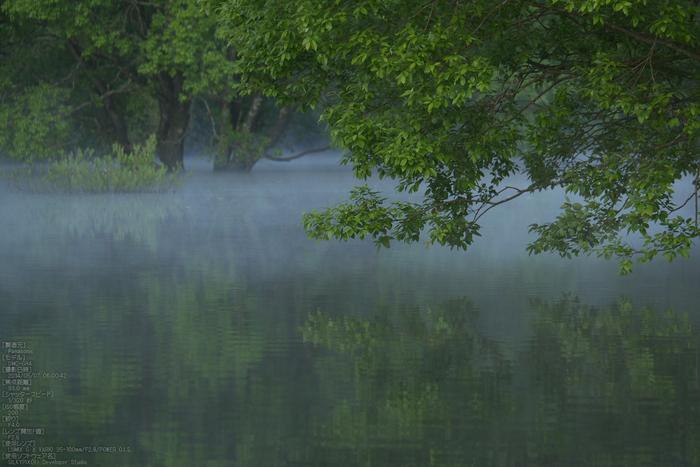 室生湖,新緑(P1120412,93mm,F4,0)2014yaotomi_s.jpg