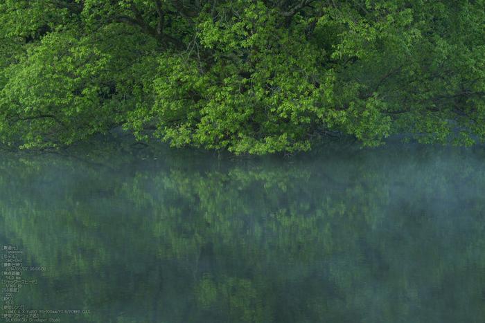 室生湖,新緑(P1120427,54mm,F5,0)2014yaotomi_s.jpg