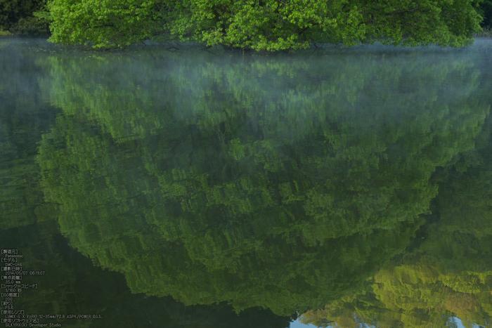 室生湖,新緑(P1120444,35mm,F5,6)2014yaotomi_s.jpg
