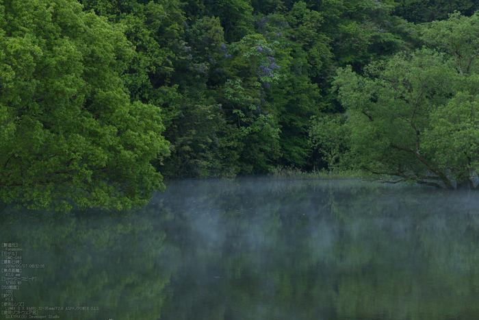 室生湖,新緑(P1120447,47mm,F5,6)2014yaotomi_s.jpg