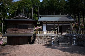 弁財天石楠花の丘(P1040454,F1.8)2014yaotomi_.jpg