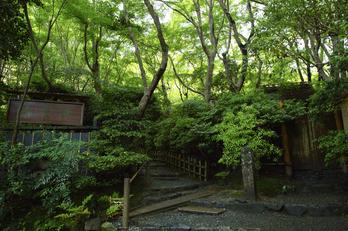 祇王寺,新緑(SDIM0436,F--)2014yaotomi_.jpg