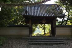 長岳寺,つつじ(P1120454,24mm,F2,8)2014yaotomi_.jpg