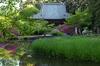長岳寺,つつじ(P1120548,21mm,F8,0,FULL)2014yaotomi_.jpg