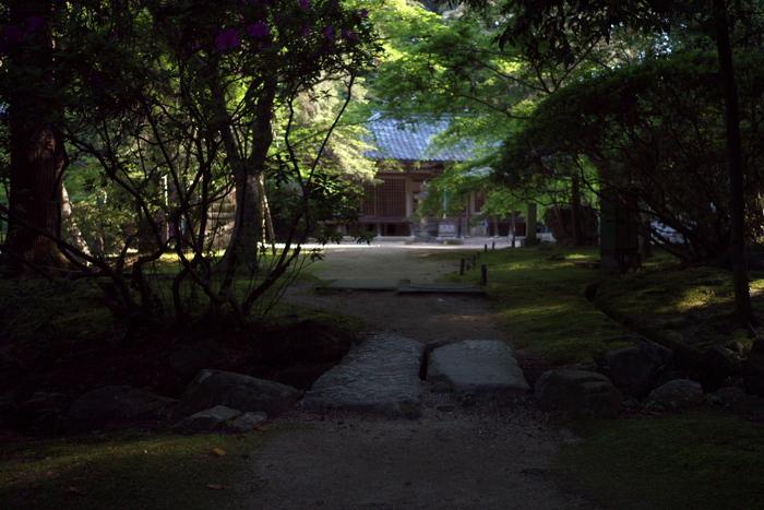 長岳寺,つつじ(P1120587,15mm,F1,7)2014yaotomi_.jpg