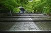 真如堂,新緑(SDIM0168,35mm,F3.2,FULL)2014yaotomi_.jpg