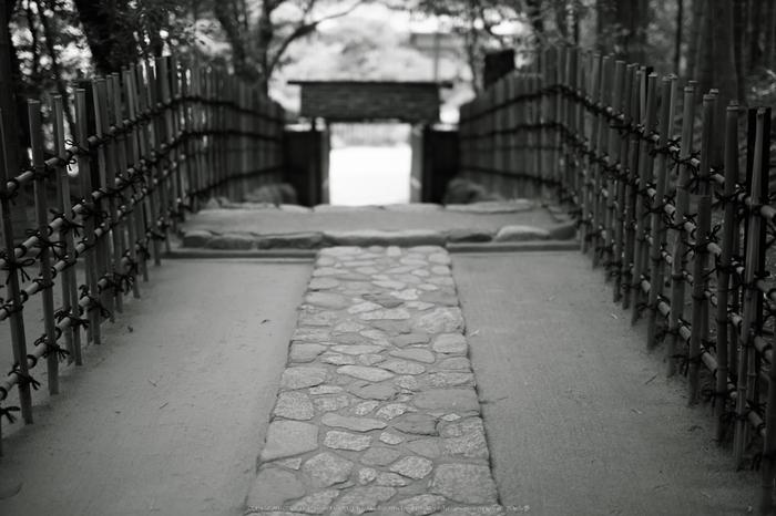 詩仙堂,さつき(5J7C0366,50mm,F1.4)2014yaotomi_.jpg