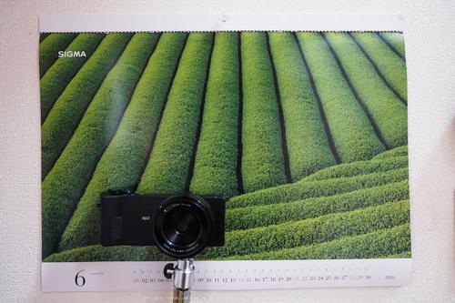 高野山,6月(DSCF6551,F4)2014yaotomi_.jpg