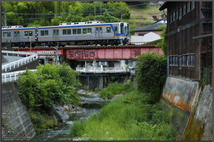 高野山,6月(SDIM0257,F3.5)2014yaotomi_Top.jpg