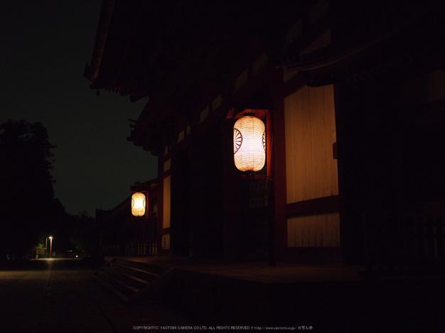 645Z(IMGP0109,55mm,F2.8,6400)2014yaotomi_.jpg