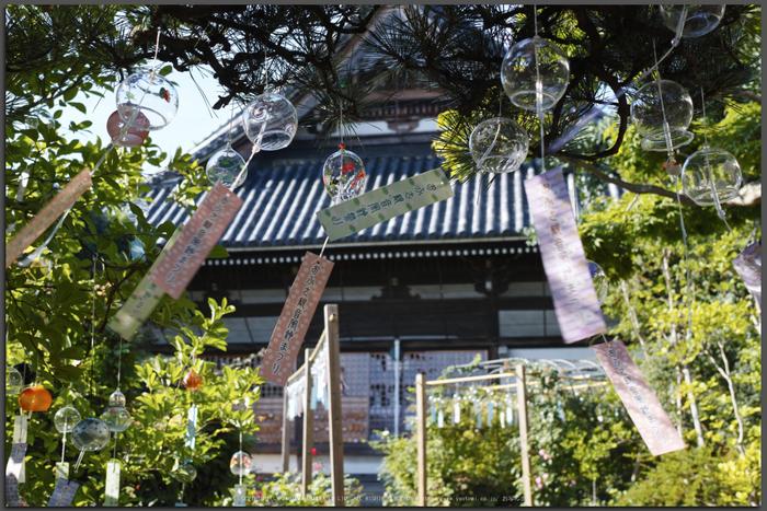 おふさ観音,風鈴まつり(SDIM0403,F5,dp2Q)2014yaotomi_Top.jpg